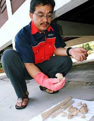 Image: To be researched: Malacca Museums Corporation's general manager Khamis Abbas examining the ancient human skeletal remains.